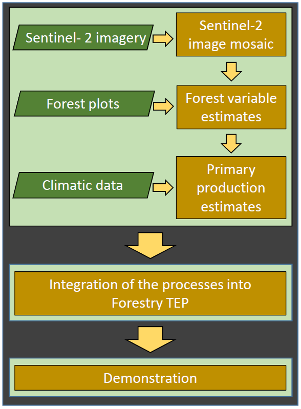 Assesscarbon project flow where Sentinel-2 images, forest plots and climate data is used to integrate the process in Forestry TEP.