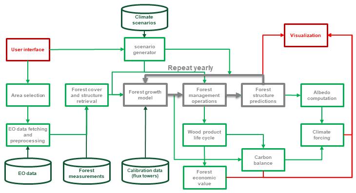 Forest DTEP flowchart
